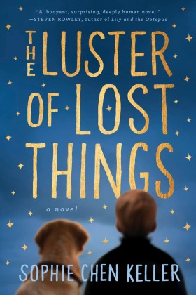 the-luster-of-lost-things_cover_final-copy